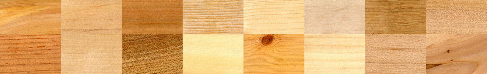 Niektóre gatunki drewna dostępne w 5parkiet